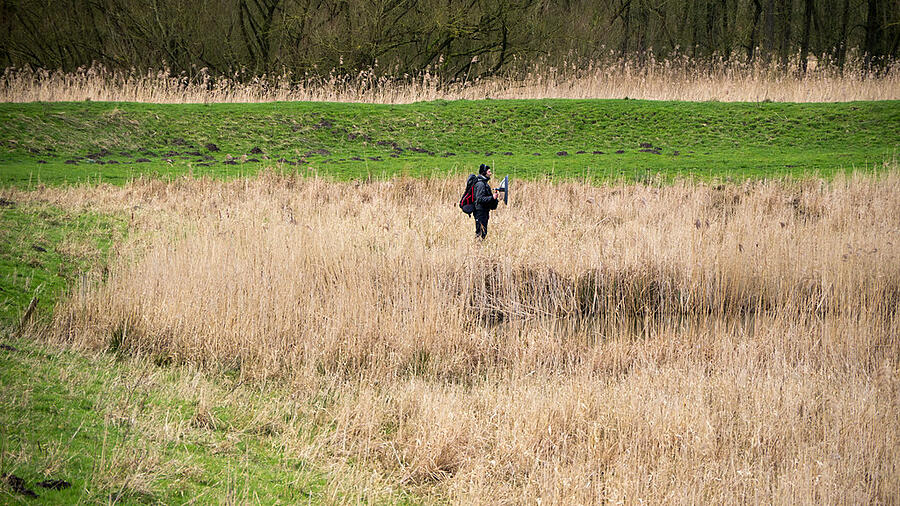 Everything you need to know about world listening day - Field Recording